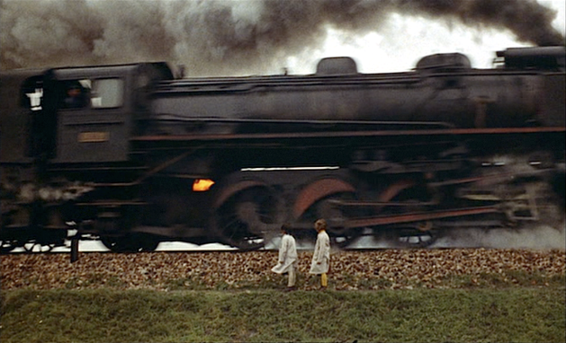 beehive-train